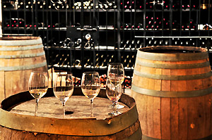 Niagara Wine Tours in the Fall