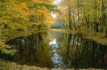 A photo of a Pond in Flamborough, ON